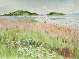 utsikt mot bjerkøya fra bekkestranda02